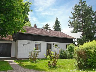Bright House with Television and Microwave in Dittishausen - Dittishausen vacation rentals