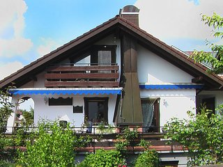 Beautiful Dittishausen vacation House with Internet Access - Dittishausen vacation rentals