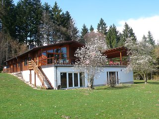 Nice Condo with Television and Balcony - Schaufling vacation rentals