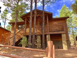 Pine Cone Cabin w/ Fenced Yard for Dogs! - Show Low vacation rentals