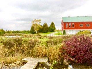 Silver Springs Estate CoachHouse - Eugenia vacation rentals