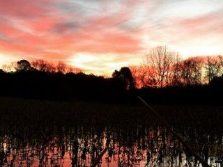 Hunting & Fishing Lodge Surrounded By North Sauty - Scottsboro vacation rentals