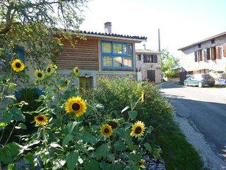 Vakantiehuis in landelijke omgeving - Roquefixade vacation rentals