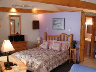 Comfortable Cottage with Deck and Internet Access - Homer vacation rentals