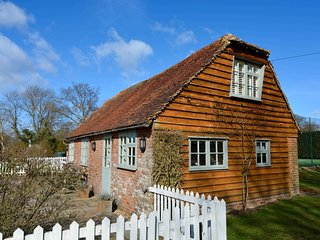 Comfortable House with Internet Access and Fireplace - Wittersham vacation rentals