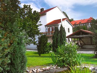 Nice Condo with Television and DVD Player - Nentershausen vacation rentals