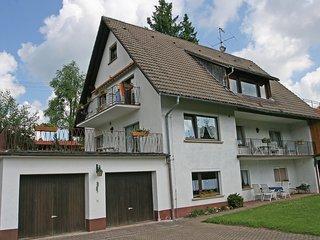 Cozy 2 bedroom Bubenbach Apartment with Television - Bubenbach vacation rentals