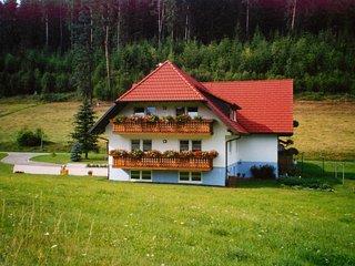 Nice 3 bedroom Condo in Bubenbach - Bubenbach vacation rentals