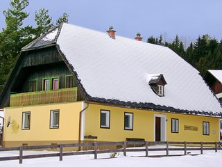 Beautiful House with Television and Microwave - Hirschegg Rein vacation rentals