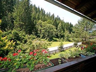 Comfortable 3 bedroom Vacation Rental in Hirschegg - Hirschegg vacation rentals