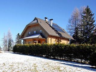 Beautiful 1 bedroom Condo in Sirnitz-Sonnseite - Sirnitz-Sonnseite vacation rentals