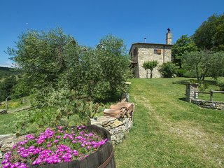 Bright 1 bedroom House in Scansano - Scansano vacation rentals