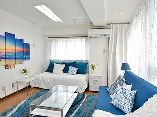 Tropic Ocean Room at International Street Makishi - Naha vacation rentals