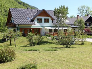 Bohinj Lake - Apartments Villa Dov - Ribcev Laz vacation rentals
