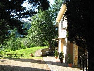 country house villa pietro romano - Castel Madama vacation rentals