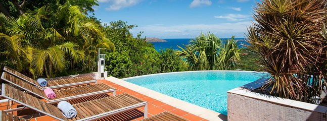 Villa Lataniers 3 Bedroom SPECIAL OFFER - Saint Jean vacation rentals
