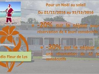 Promo NOEL AU SOLEIL Studio T1bis Fleur de Lys - Trois Rivieres vacation rentals