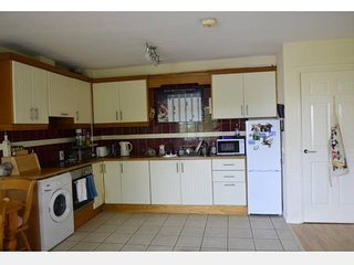 Lovely 2 bedroom Apartment in Renmore - Renmore vacation rentals