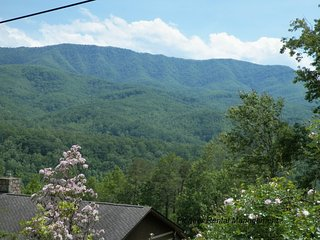 Lil Cabin In The Woods - Gatlinburg vacation rentals