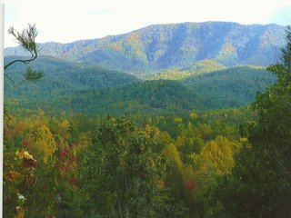 Something Special - Gatlinburg vacation rentals