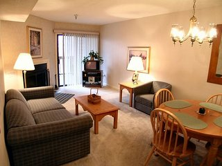 Beaver Ridge 117:Cozy 1-bedroom condo,Beaver Lodge, located in Canaan Valley! - Davis vacation rentals