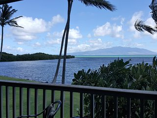 Perfect Condo with Internet Access and Shared Outdoor Pool - Kaunakakai vacation rentals