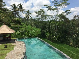 Luxurious and enormous UBUD 7 BDR Villa with stunning view + 2 swimming pool - Tegalalang vacation rentals