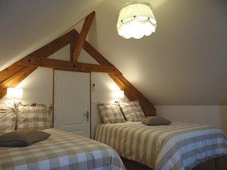 Meublé familial entièrement rénové pour 4 à 10 personnes, classé 4 étoiles - Romilly-sur-Seine vacation rentals