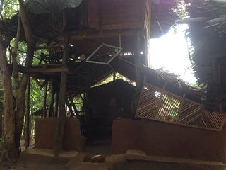 Perfect 5 bedroom Habarana Tree house with Internet Access - Habarana vacation rentals