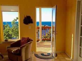 180-Degree Ocean View!  Bring binoculars! - Oceanside vacation rentals