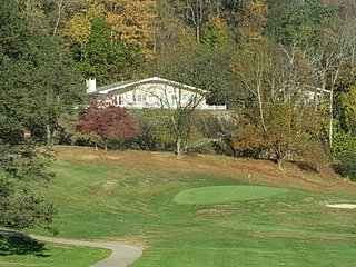 Convenience and Beauty with Golf Course and Lake Junaluska, Mid Century Modern - Waynesville vacation rentals