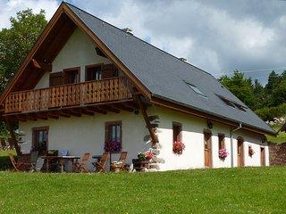 Location dans la nature, en moyenne montagne, près des villages alsaciens. - Freland vacation rentals