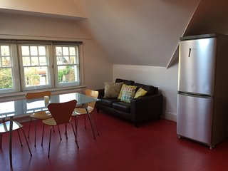 Spacious Cosy Apartment in North Oxford with parking! - Marston vacation rentals