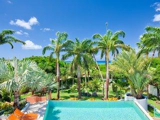 BLUE PALM... WOW!! Fabulous contemporary villa just 100 steps to beautiful Plum Baie beach + Full AC, Tennis & Gym!! - Plum Bay vacation rentals
