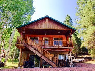 Nice Cabin with Deck and Internet Access - Alton vacation rentals