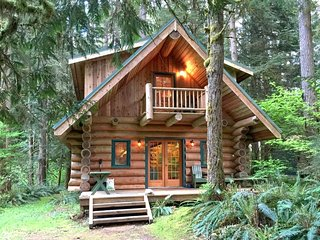 10SL Log Cabin at Mt. Baker with WiFi - Glacier vacation rentals