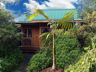 Hale Awa - Private Luxurious Cabins on 4 Acres W/Pool & Exterior BBQ Kitchen #1 - Pahoa vacation rentals