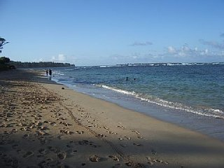 2 Bedroom, 2 Bath Luxury Oceanview Condo with All the Comforts of Home. - Laie vacation rentals