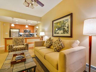 Luxury Ski In/Out In Resort Base Village #3613 - Great Views/Hot Tub/Garage/WiFi - Winter Park vacation rentals