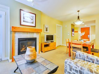 Luxury Ski In/Out In Resort Base Village #3324 - Great Views/Hot Tub/Garage/WiFi - Winter Park vacation rentals