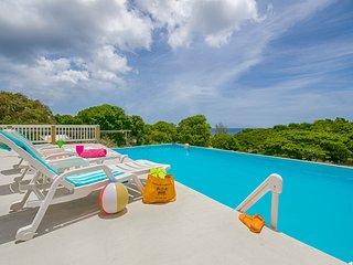 Casa Larga V - Saint Croix vacation rentals