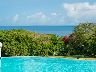Great River House, Montego Bay 5BR - Hope Well vacation rentals