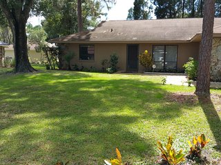 Nice House with A/C and Children's Pool - Wesley Chapel vacation rentals