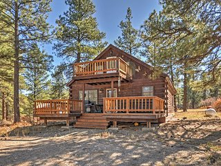 1BR Pagosa Springs Cabin w/ Expansive Two Story Deck! - Pagosa Springs vacation rentals