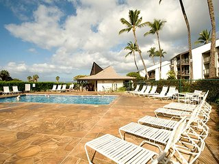 Nice House with Internet Access and A/C - Mauna Lani vacation rentals