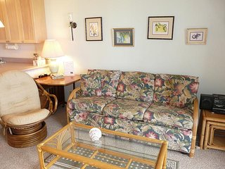 Hale Kai O'Kihei 1 Bedroom Ocean View 102 - Kihei vacation rentals