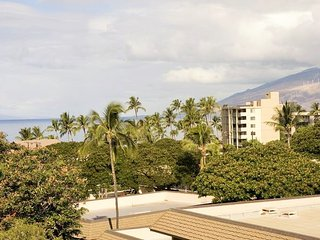Kihei Akahi 1 Bedroom C515 - Kihei vacation rentals