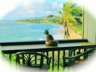 Wailua Bay View Ocean Front 206 - Kapaa vacation rentals