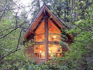 04SL Pet Friendly Cedar Cabin with a Private Hot Tub - Glacier vacation rentals