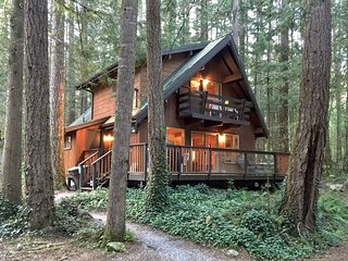 27GS Pet Friendly Cabin Near Mt. Baker with WiFi - Glacier vacation rentals